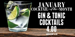 January Cocktail Of The Month - Gin & Tonic